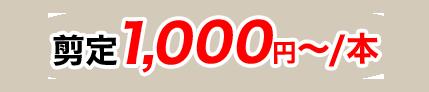 剪定1,000円~/本